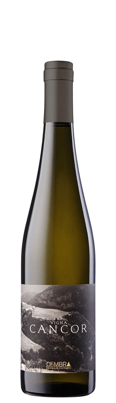 cembra-cancor-riesling-levigne